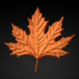 Maple_Leaf_6x55_front