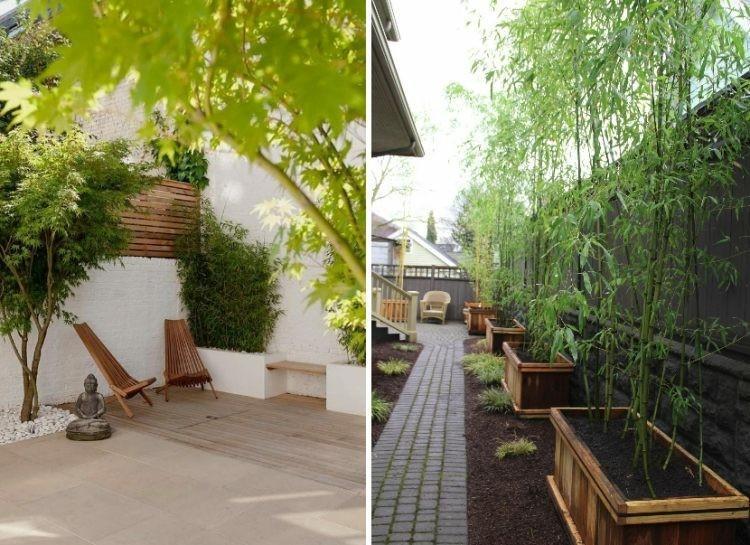 Salon Zen Bambou
