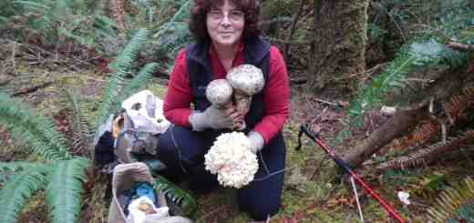 "Anna Moore  ""Mushrooms of the Oregon Dunes""  Speaker"