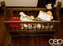 The DoomzToo Birth Story — The Nursery — DoomzToo's Cradle