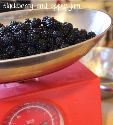 making preserves - blackberry and apple jam recipe