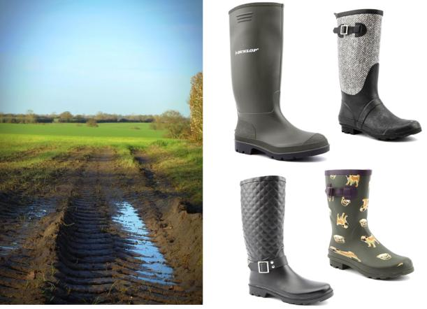 countryside field muddy photograph tuesday shoesday wellies
