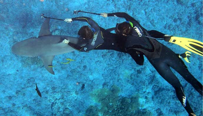 6 Best Freediving Fins - Reviews, How-Tos + Best Prices
