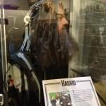 Hagrid's head