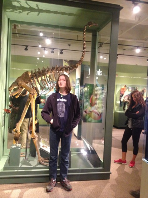My 6' tall son in front of the moa skeleton on display at the Harvard Museum of Natural History