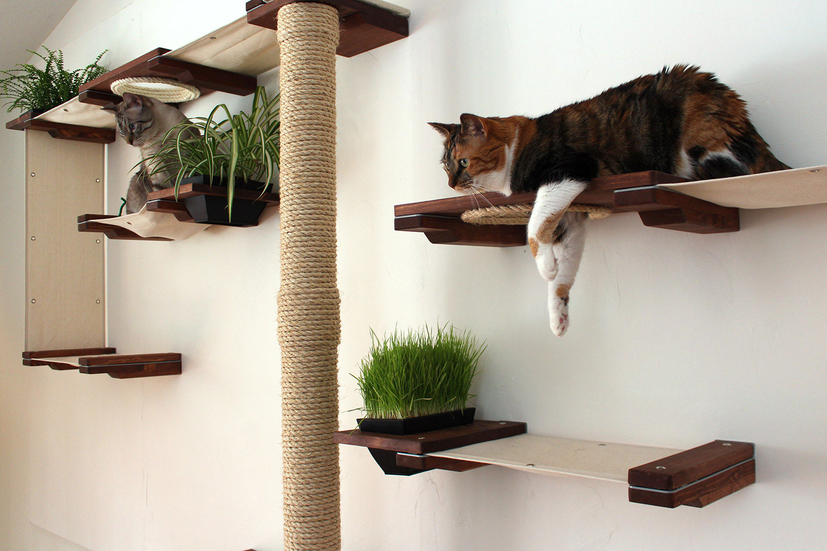 Cat Furniture Wall Cat Mod Gardens Complex Catastrophic Creations