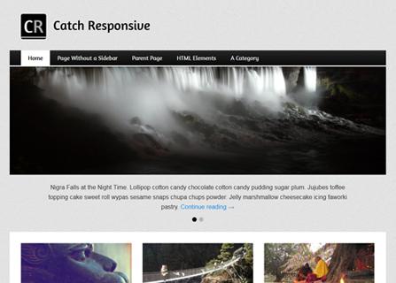 Catch Responsive