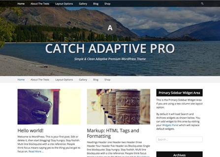 Catch Adaptive Pro WordPress Theme