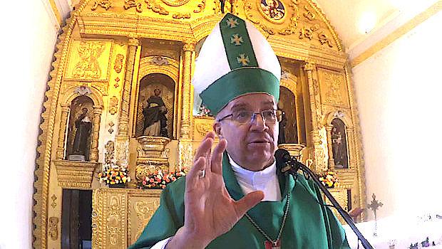 Monseñor Victor Hugo Palma - Tiempo Ordinario - 2