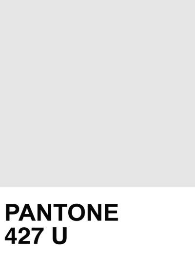 pantone-427jpg (400×523) Narelle Glossop Pinterest Pantone - sample pms color chart