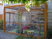DIY Catio Plans - Catio Spaces
