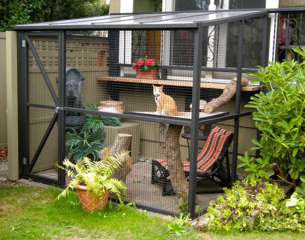 Cage Exterieur Chat Top 10 Benefits Of A Catio Catio Spaces