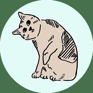 貓是生活 - 貓咪保健室