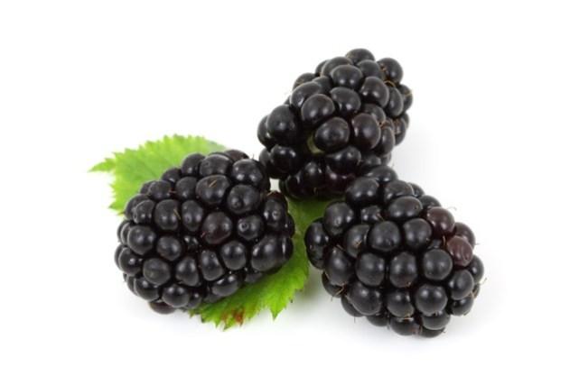 Blackberry super duper murah kalau di Situ Patenggang :D