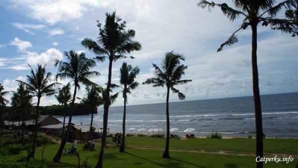 Pantai Terbaik Di Pulau Bali 2 : Pantai Balangan yang penuh dengan pohon kelapa