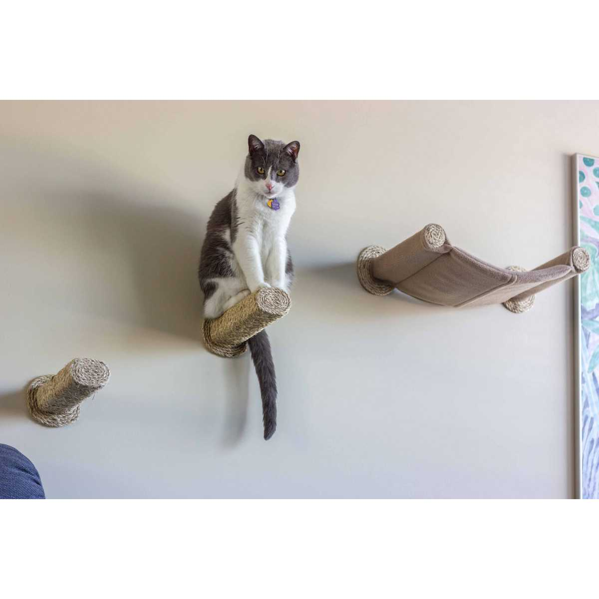 Cat Furniture Wall Cat Hammock Wall Mounted Cat Bed With 2 Sisal Steps