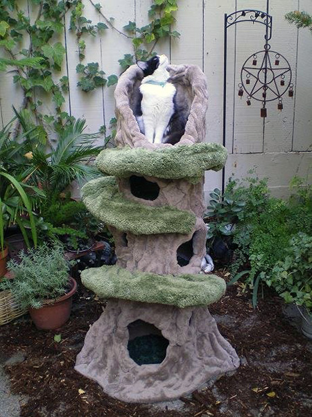 Kletterbaum Katze Pete Plumley's Cat Trees Are Functional Works Of Art - Catster