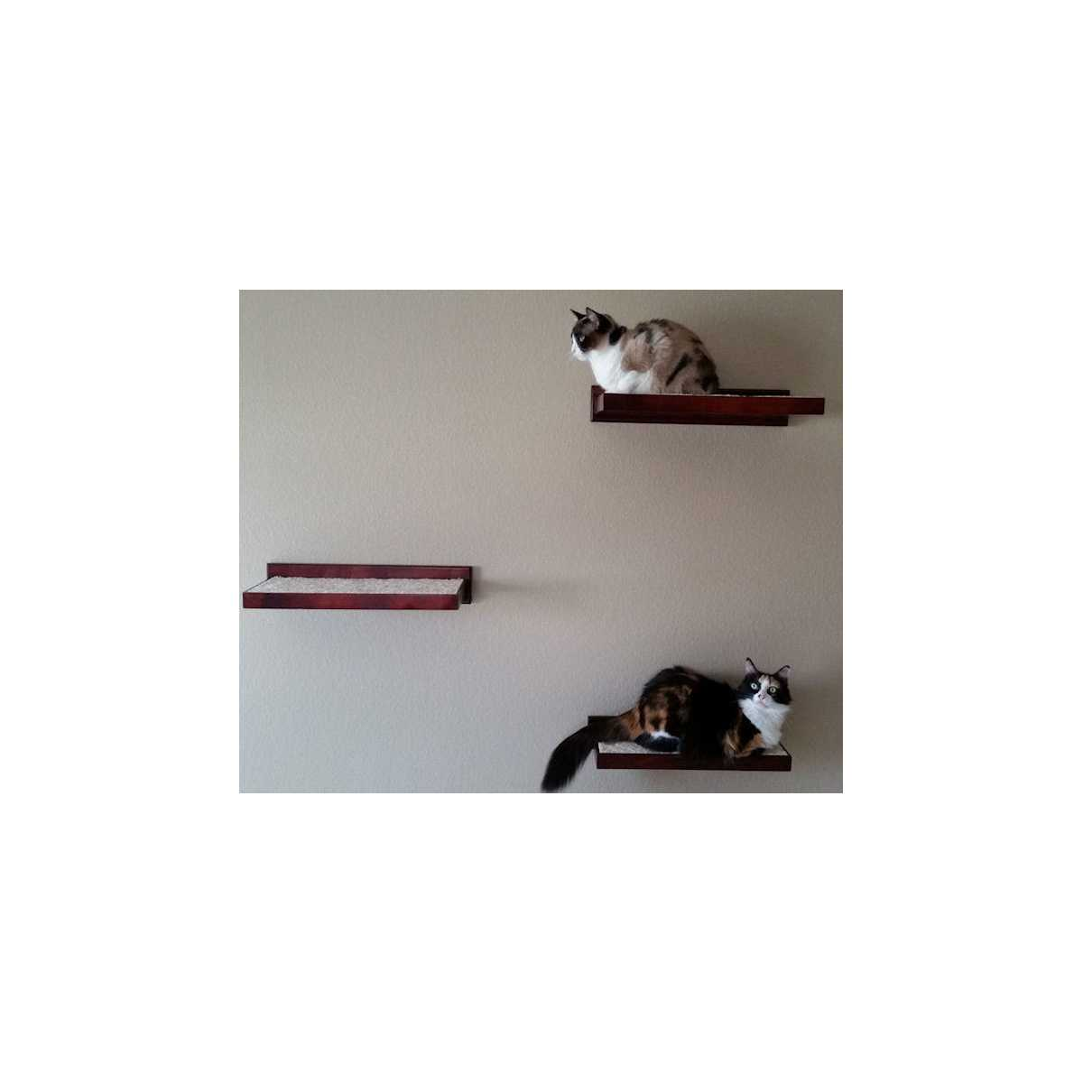 Cat Furniture Wall Cat Furniture Climbing Wall Shelves