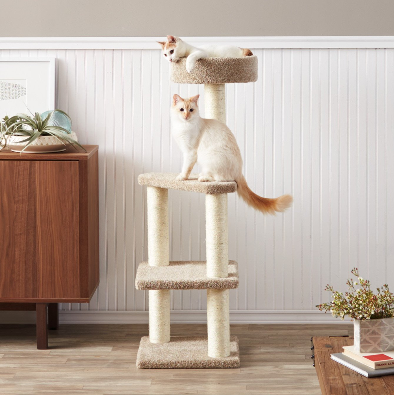 Pretty Cat Furniture The Amazonbasics Cat Tree With Scratching Posts Is It Worth