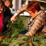 bourse de dons de plantes 2017_8