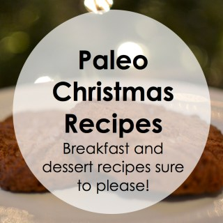 The Best Paleo Christmas Recipe Round-up