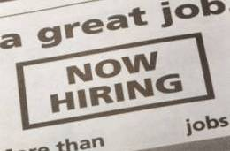 JobsDaily-33.jpg