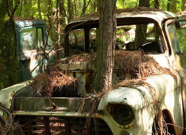 Morgan Car Wallpaper Rotting Art A Museum Of Junked Cars Pictures Cbs News