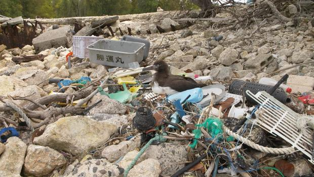 The Great Pacific Garbage Patch Cleaning Up The Plastic