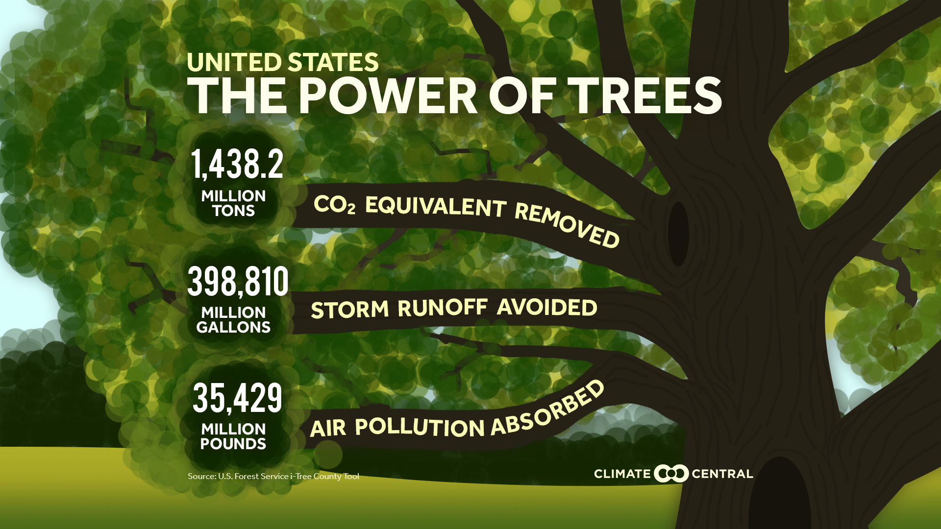 How To Reduse Pollution The Widespread Climate Benefits Of Trees Climate Central