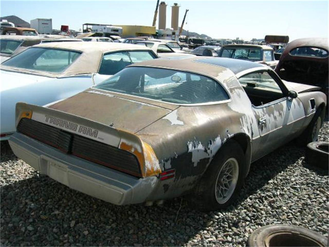 1979 Trans Am Picture For Sale 1979 Pontiac Firebird Trans Am In Phoenix Arizona