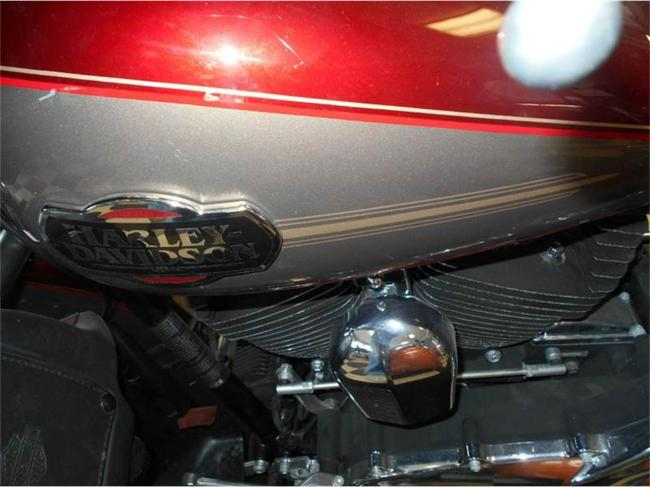2009 Harley-Davidson Electra Glide - Manual (10)