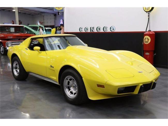 1977 Chevrolet Corvette - Texas (13)