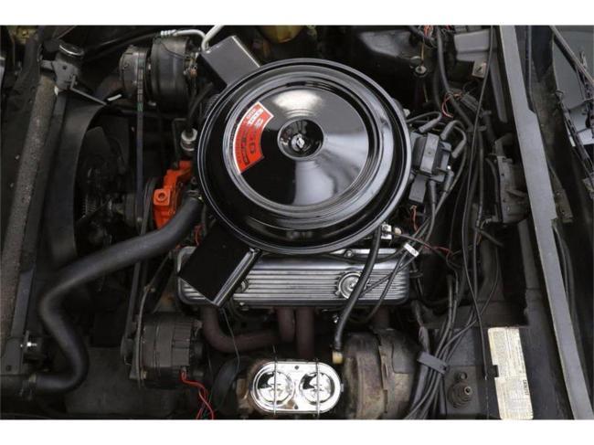 1977 Chevrolet Corvette - 1977 (40)