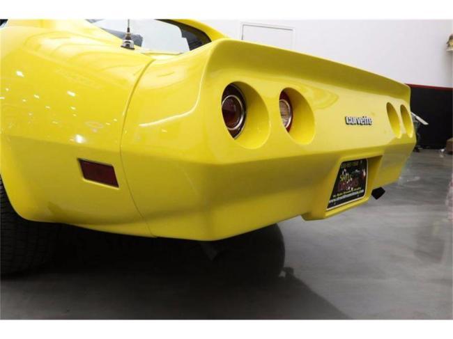1977 Chevrolet Corvette - Corvette (59)
