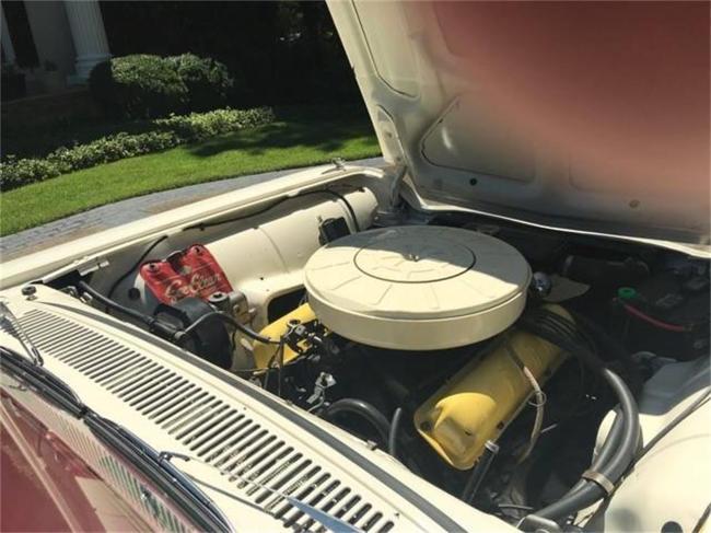 1960 Ford Thunderbird - Georgia (3)