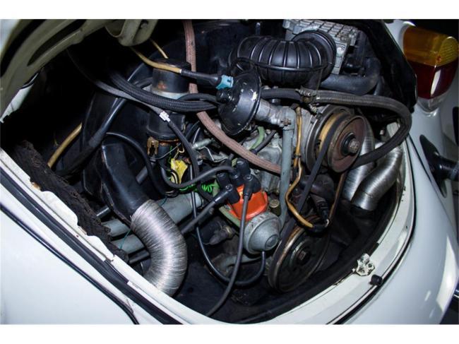 1976 Volkswagen Beetle - Volkswagen (13)