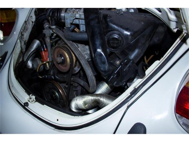 1976 Volkswagen Beetle - Volkswagen (14)