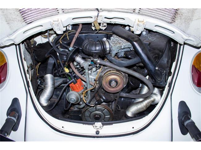 1976 Volkswagen Beetle - 1976 (18)
