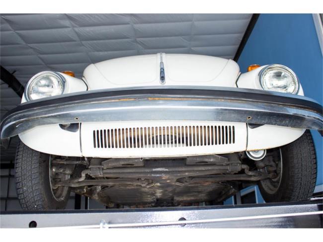 1976 Volkswagen Beetle - Volkswagen (34)
