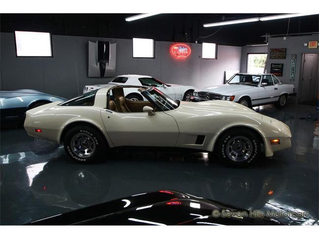1981 Chevrolet Corvette - 1981 (4)
