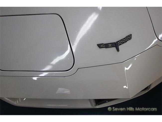 1981 Chevrolet Corvette - Corvette (19)