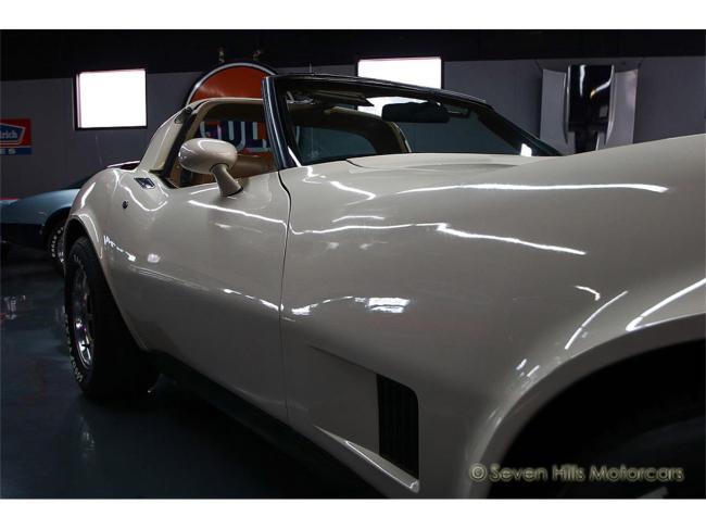1981 Chevrolet Corvette - 1981 (25)