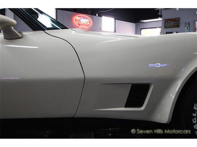 1981 Chevrolet Corvette - Corvette (26)