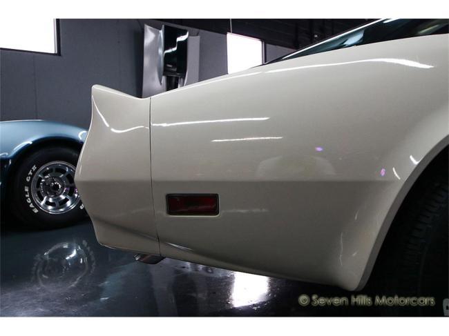 1981 Chevrolet Corvette - 1981 (30)