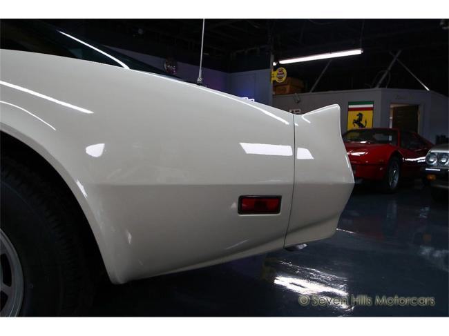 1981 Chevrolet Corvette - 1981 (35)