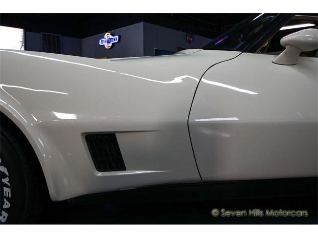 1981 Chevrolet Corvette - 1981 (37)