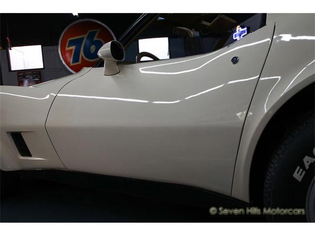 1981 Chevrolet Corvette - Corvette (40)