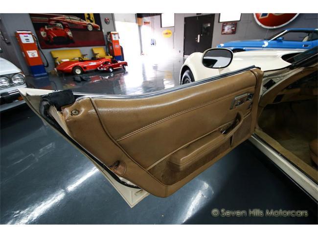1981 Chevrolet Corvette - Corvette (78)