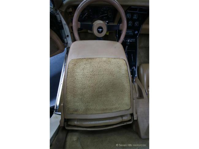 1981 Chevrolet Corvette - Corvette (82)