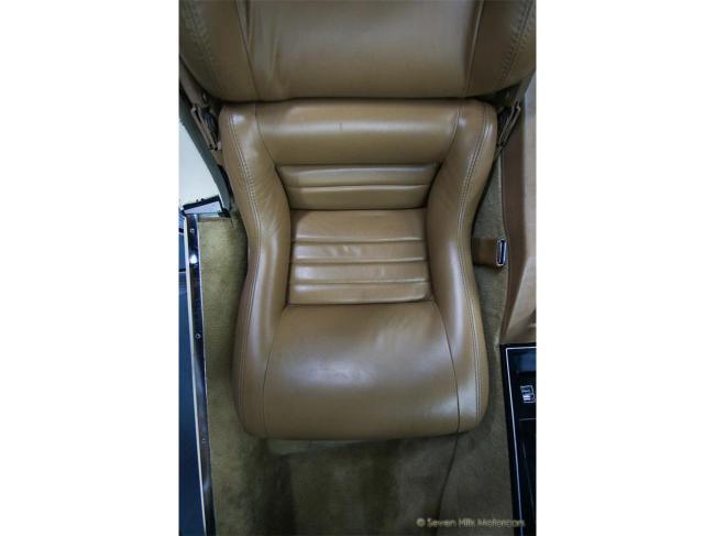 1981 Chevrolet Corvette - Corvette (87)
